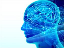 button-only@2x 脳トレ効果を高める記憶力トレーニング